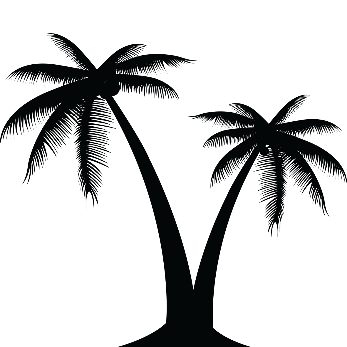 picture royalty free stock Palm Tree Silhouette at GetDrawings
