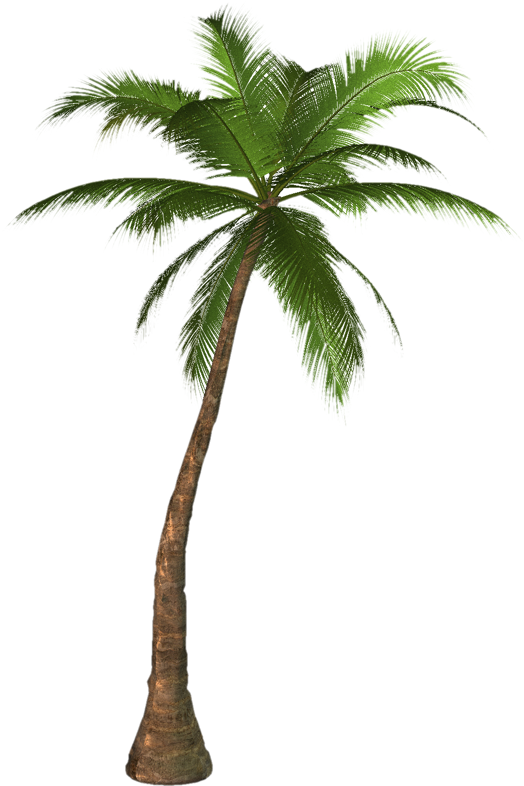 clip art black and white library Date Palm Clipart hawaii palm trees