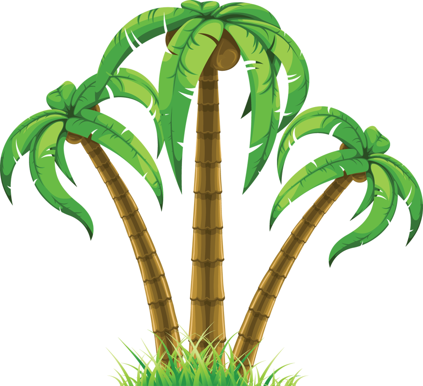 graphic royalty free library Palm drawing tropical tree. Cp paurb clip art.