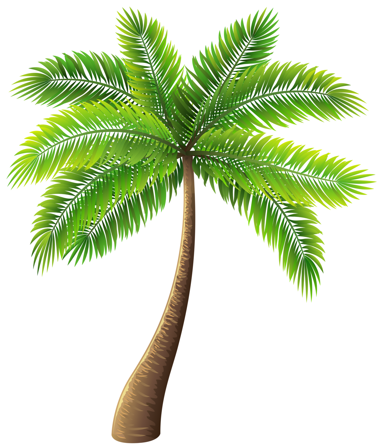 graphic free stock Palm clipart service. Tree png clip art