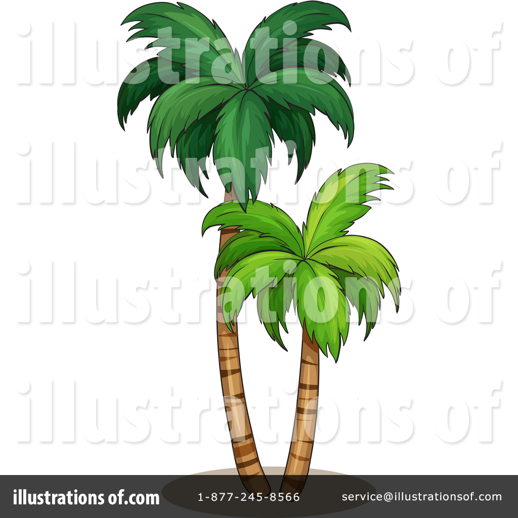 banner transparent stock Palm clipart service. Tree illustration by graphics