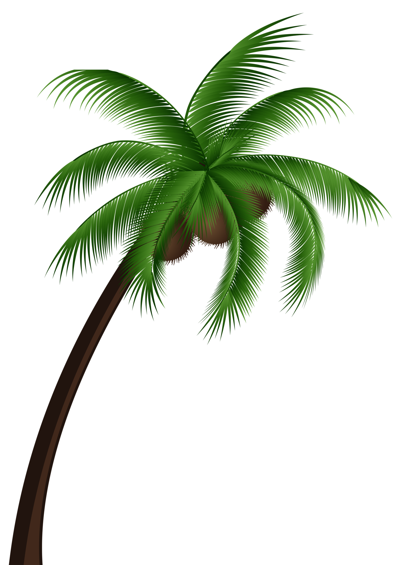 vector black and white download Coconut tree png clip. Palm clipart service