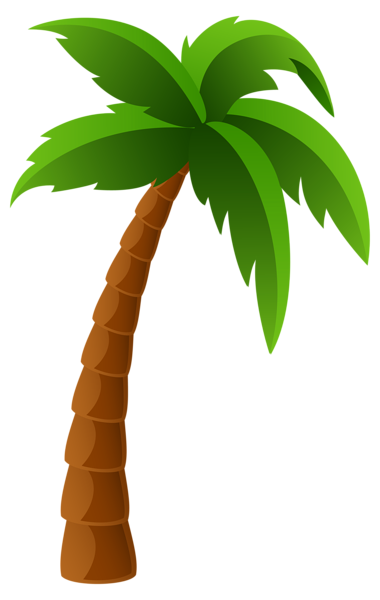 banner transparent library Tree png image graphics. Palm clipart.
