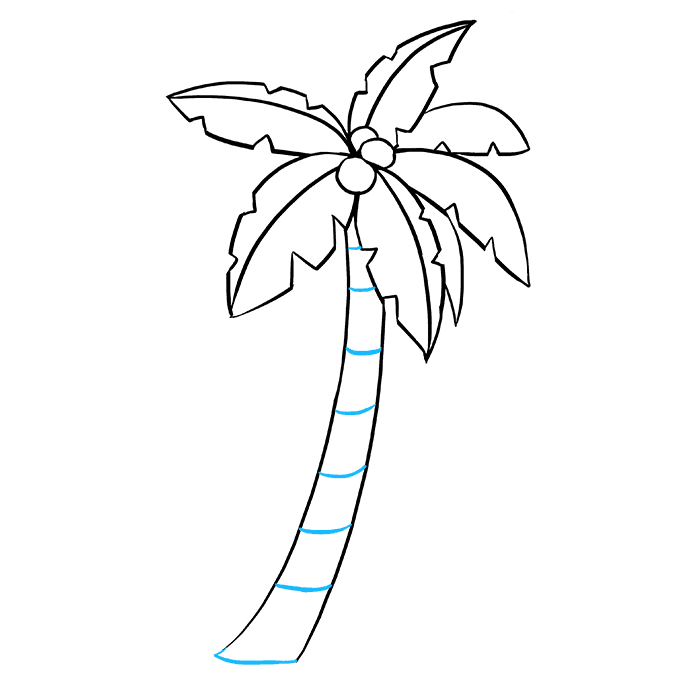 banner freeuse Palm Tree Drawing Outline at PaintingValley