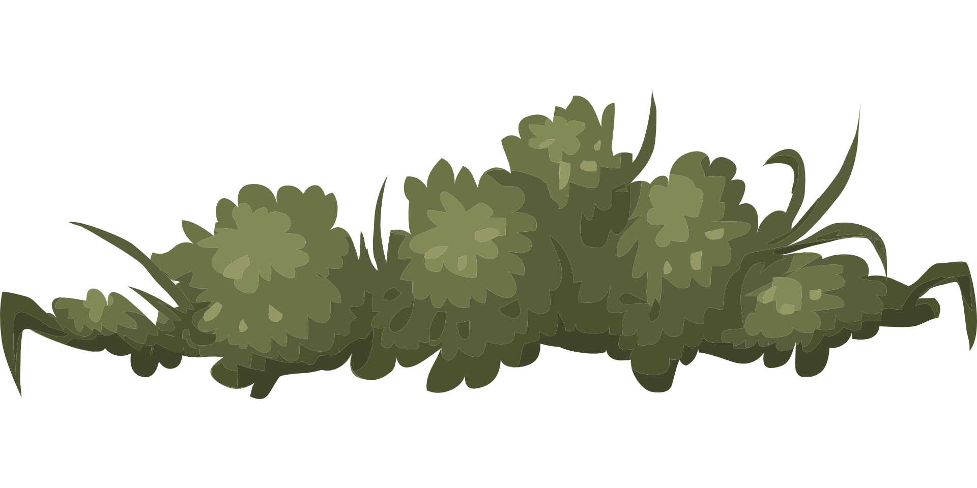 jpg royalty free library Collection of free drawing. Vector bushes green bush