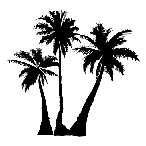 banner royalty free stock Palms vector illustrator. Palm tree clip art.