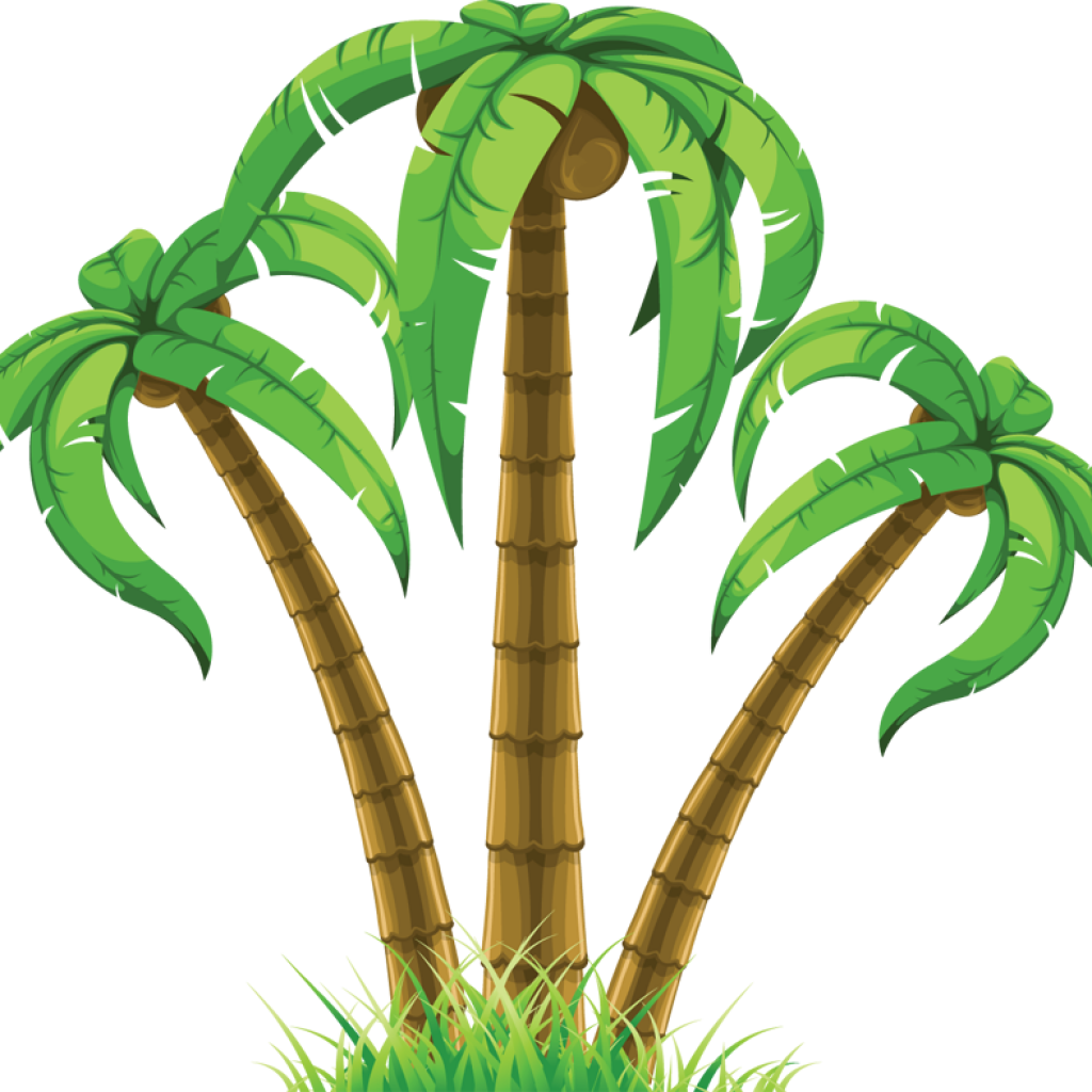 transparent stock Palm Tree Clip Art Free flower clipart hatenylo