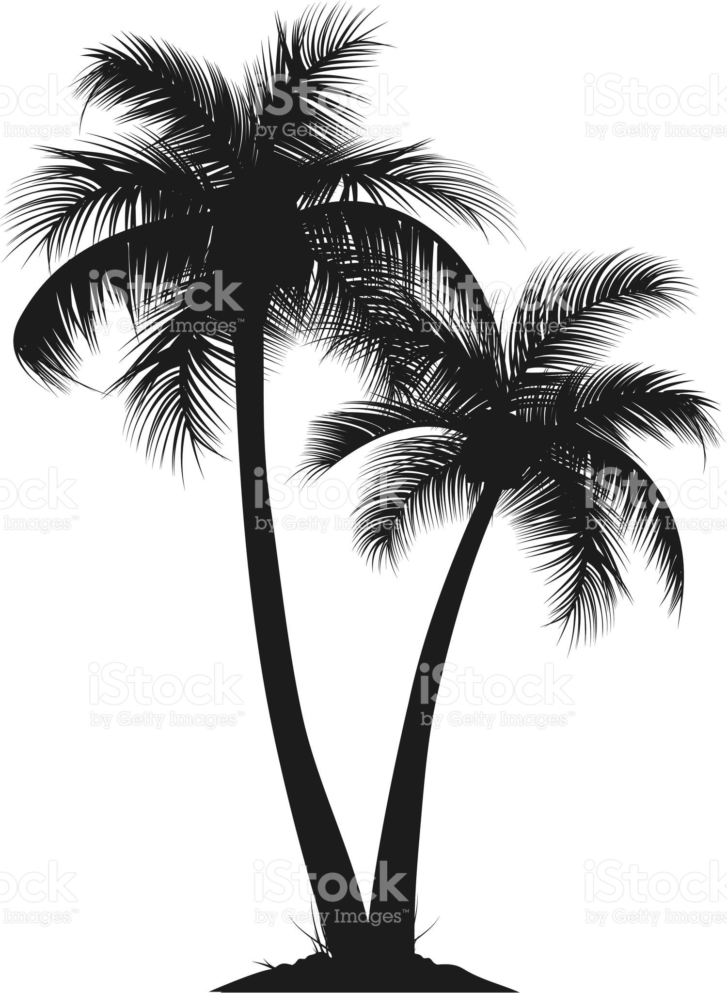 clipart royalty free stock Palms vector. Two silhouette of palm.