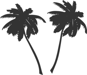 clip art library stock Palms vector. Palm trees clip art.