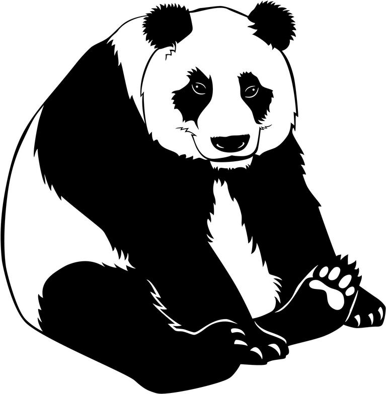 png library download Free download clip art. Panda bear clipart black and white