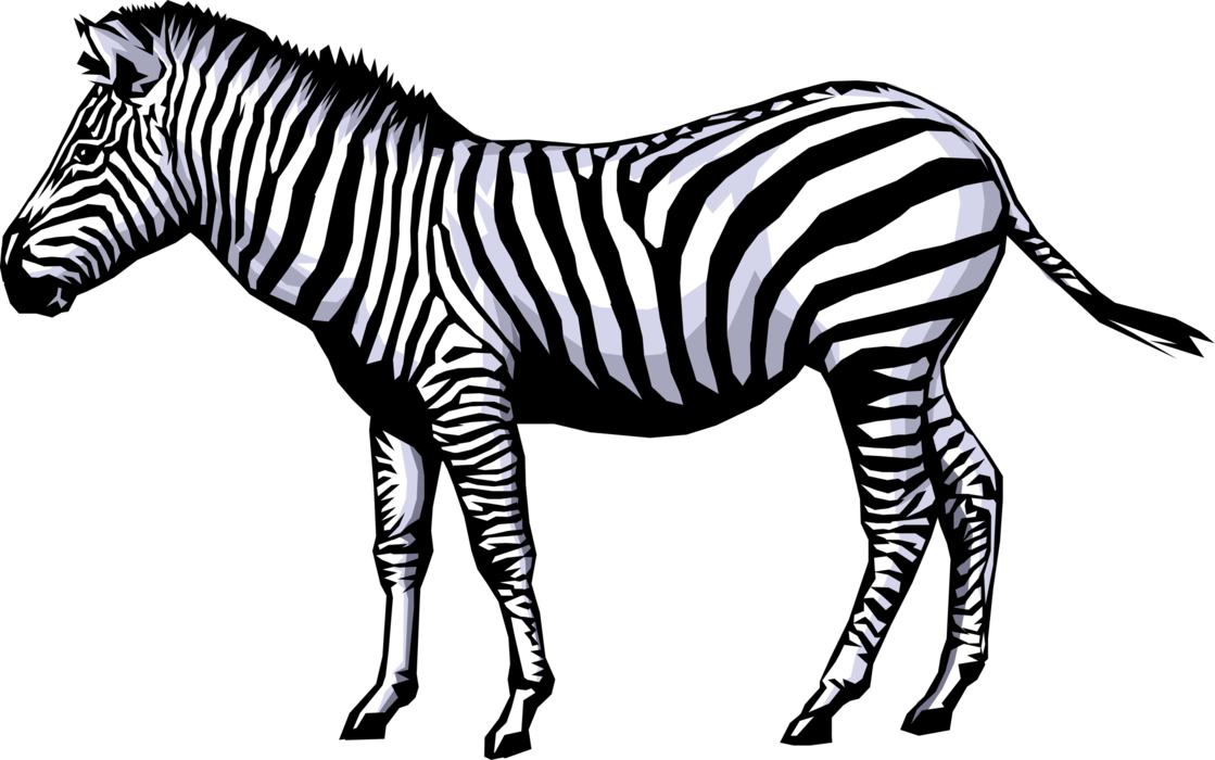 vector free library Zebra Clipart full hd