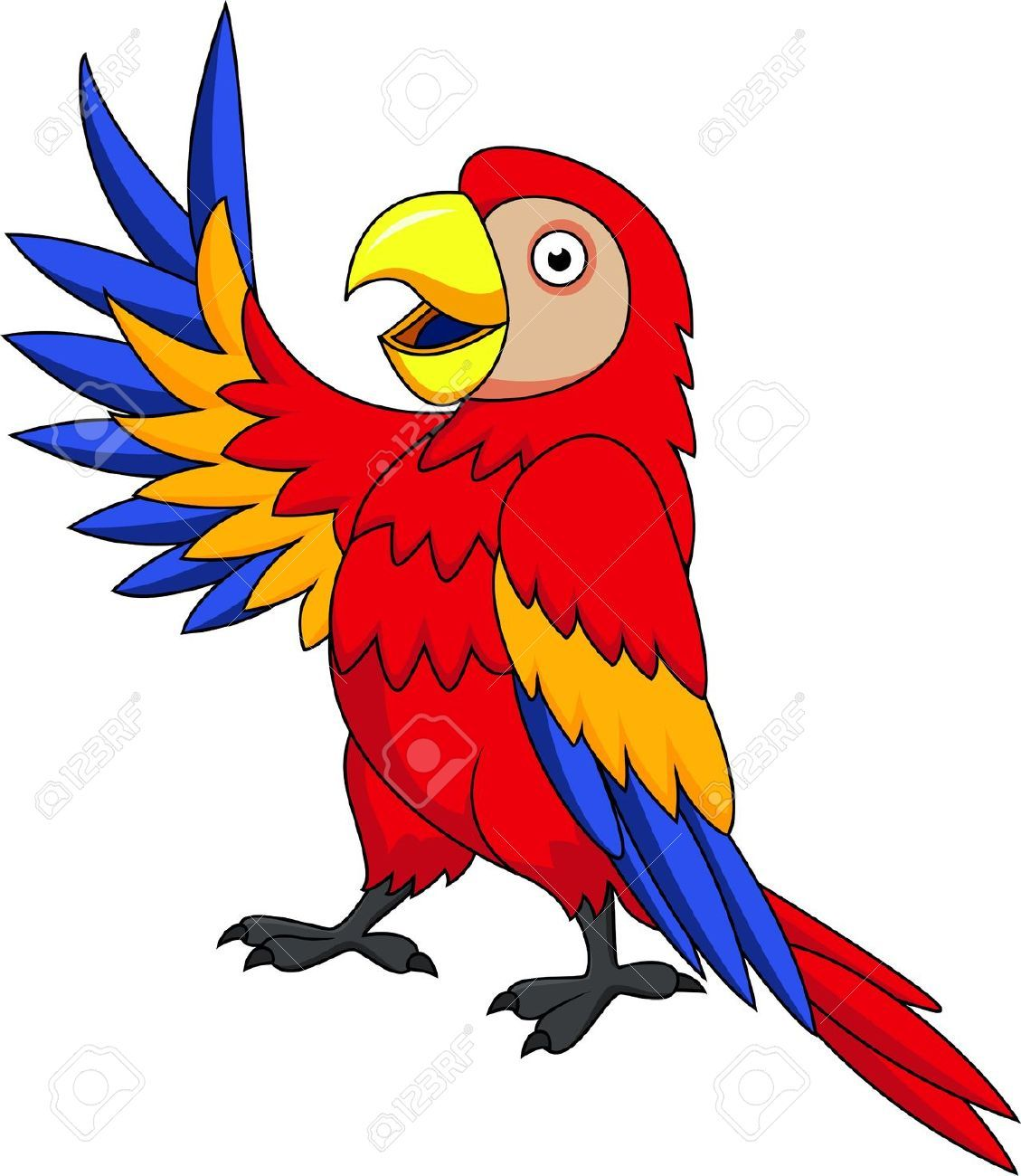 png free stock Google search animals image. Parrot clipart