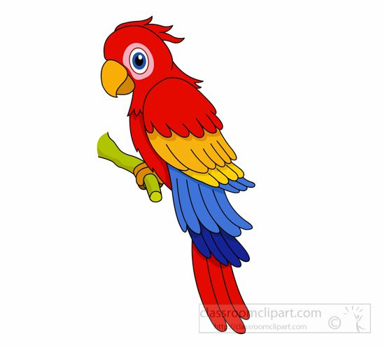 clip art black and white download Parrot clipart. Free download on webstockreview.