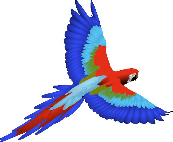 jpg free stock Clip art vector panda. Parrot clipart