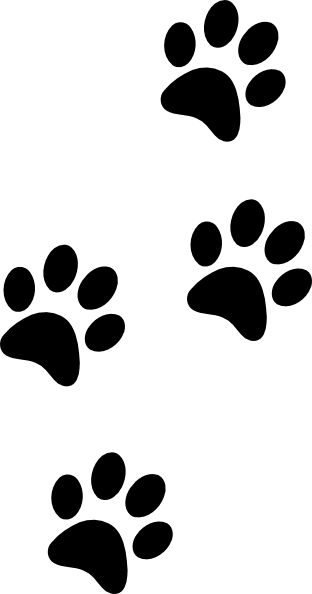 graphic black and white library American Kennel Club Canine Health Foundation