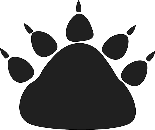 freeuse Bear claw clipart. Image of black paw