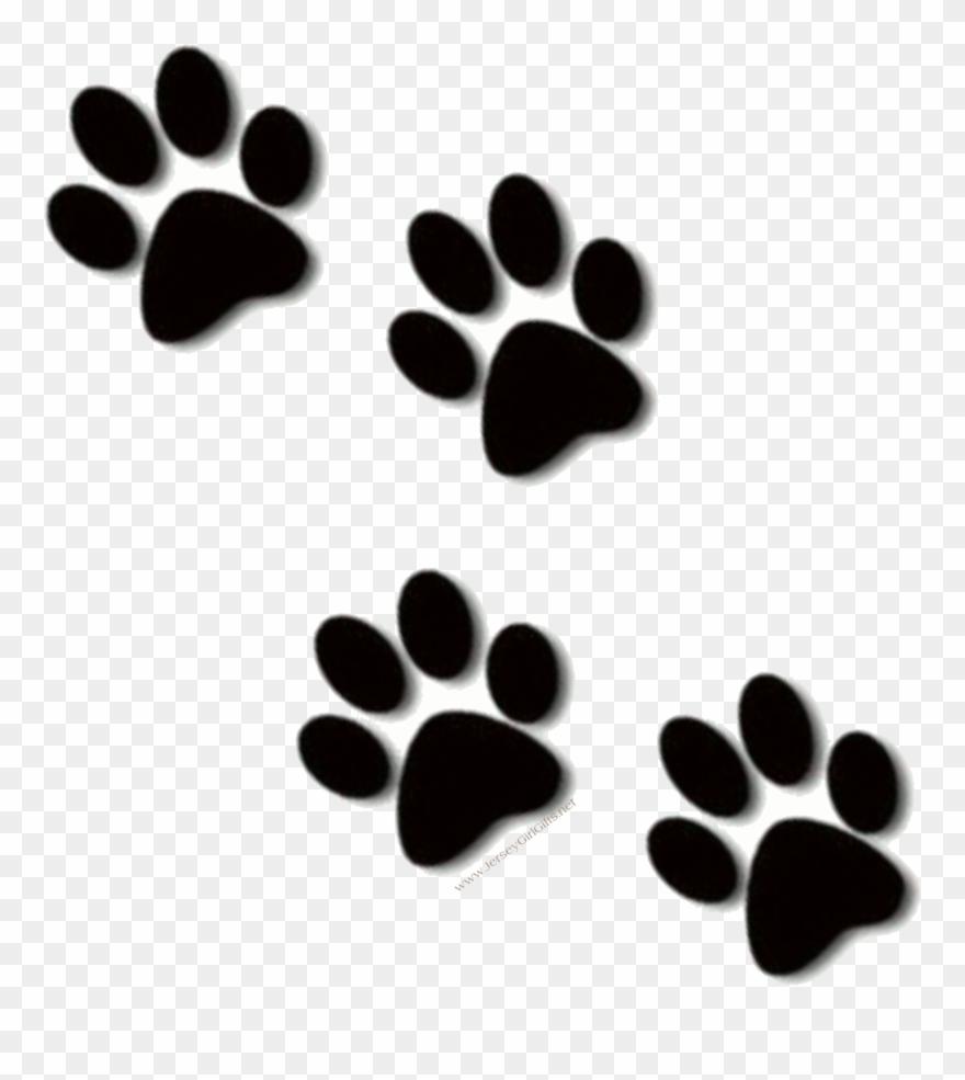 image black and white stock Paws clipart car. Bulldog paw print clip