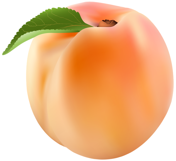 png library download Png clip art image. Peach clipart