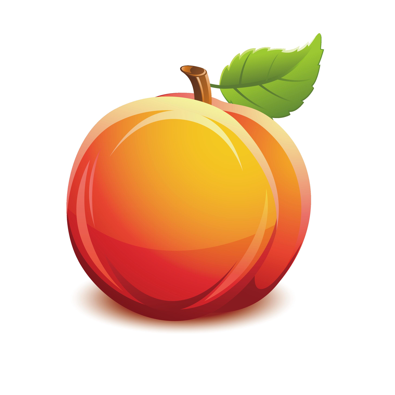 vector transparent Peaches clipart. Nectarine fruit clip art