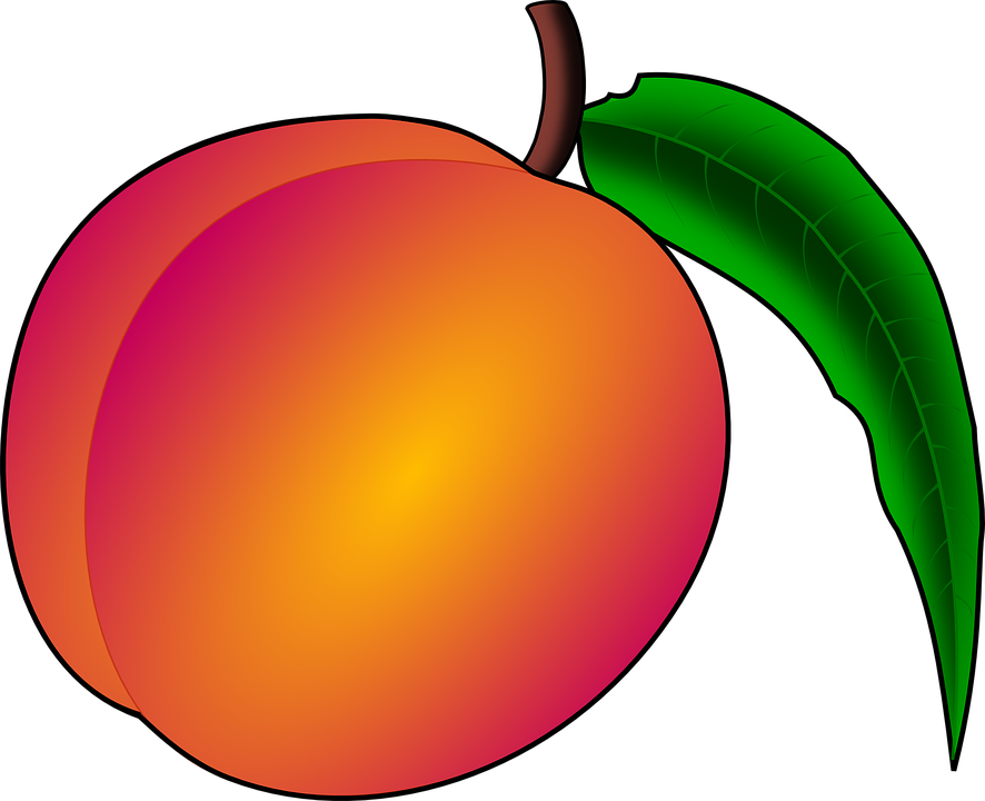 picture transparent stock peaches clipart georgia peach #81729799