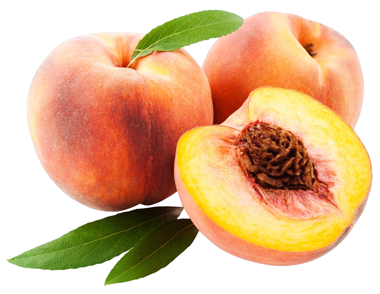 vector royalty free Peach PNG Image