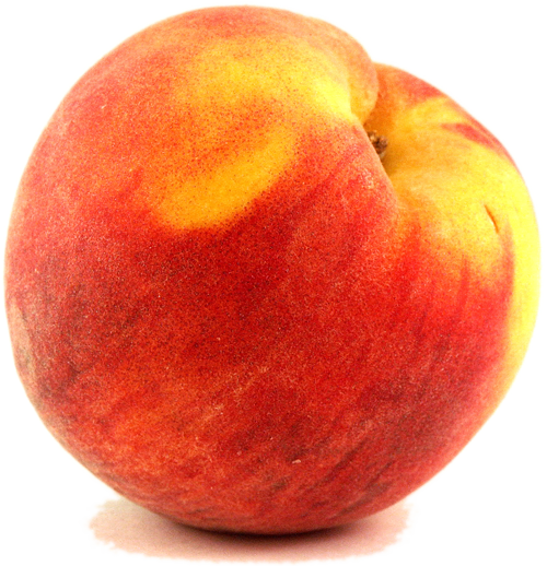 clip art library stock peaches clipart one #81753349
