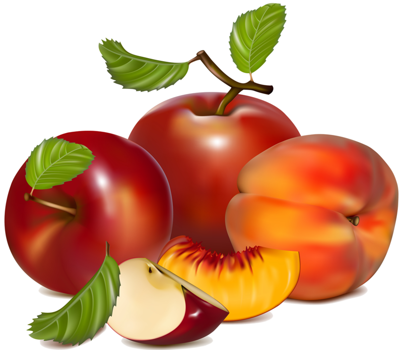 jpg library peaches clipart ripe fruit #44595628
