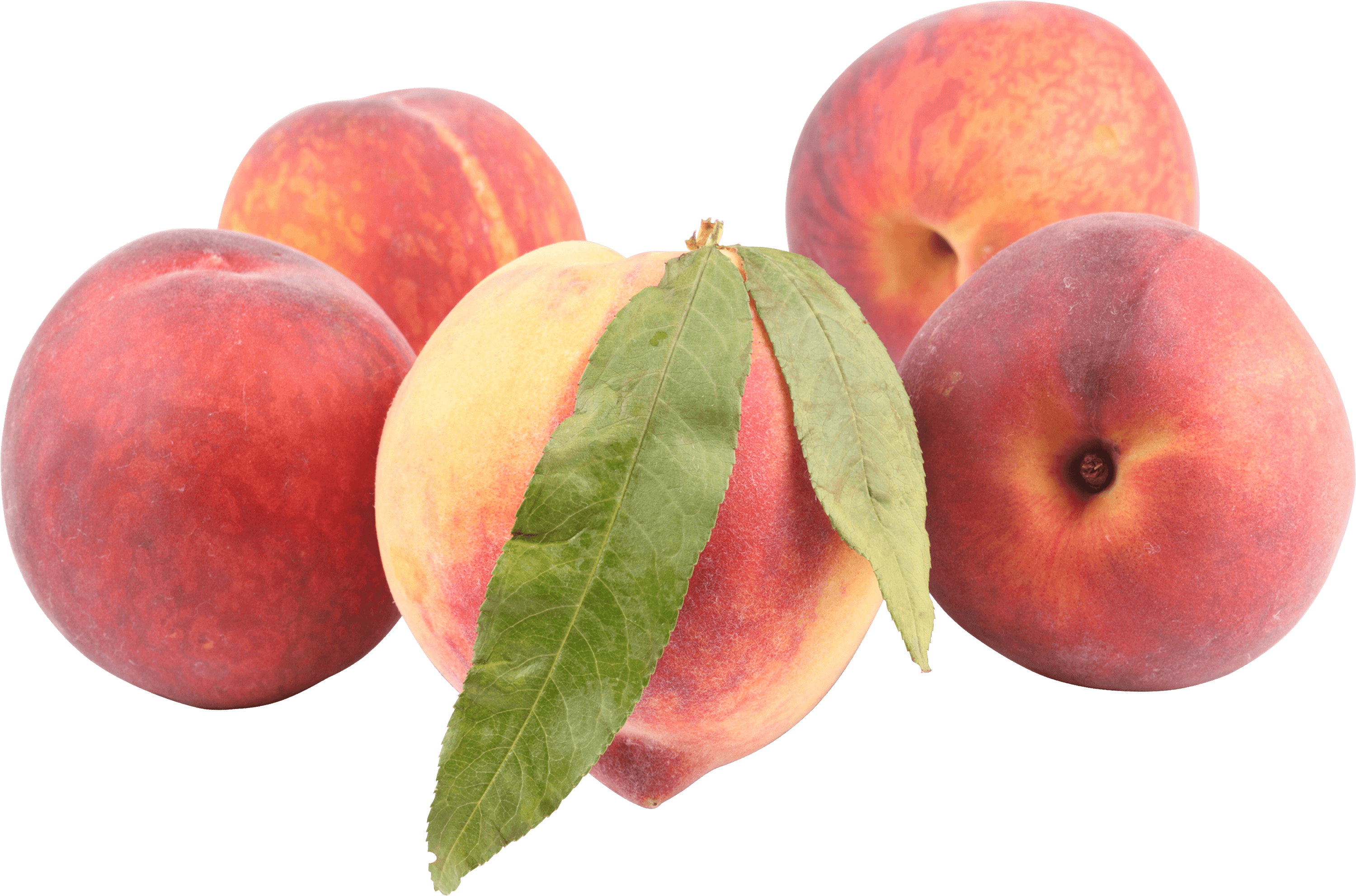 banner freeuse library Transparent peach. Peaches png stickpng