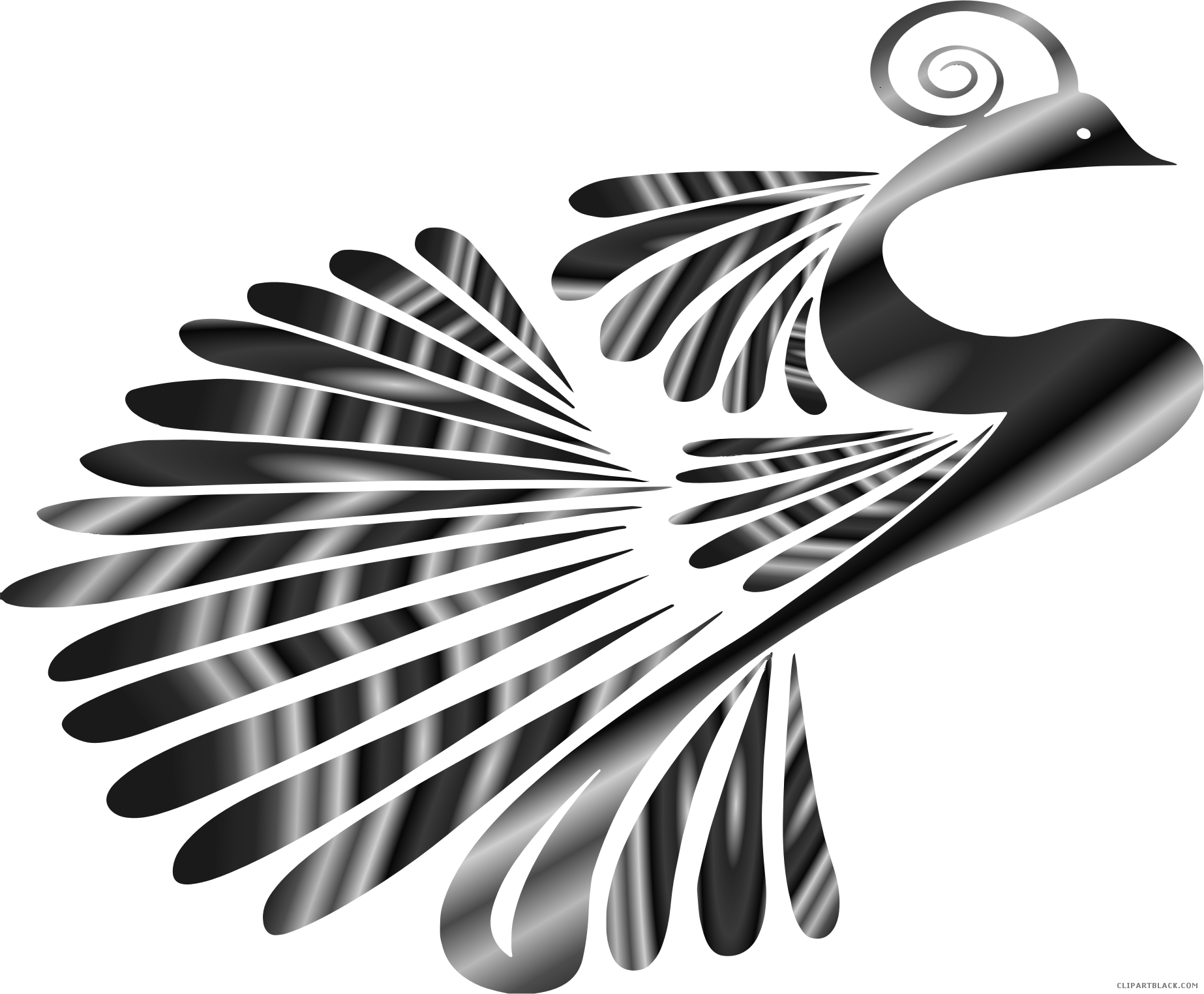 clip art royalty free stock Peacock clipart. Grayscale clipartblack com animal.