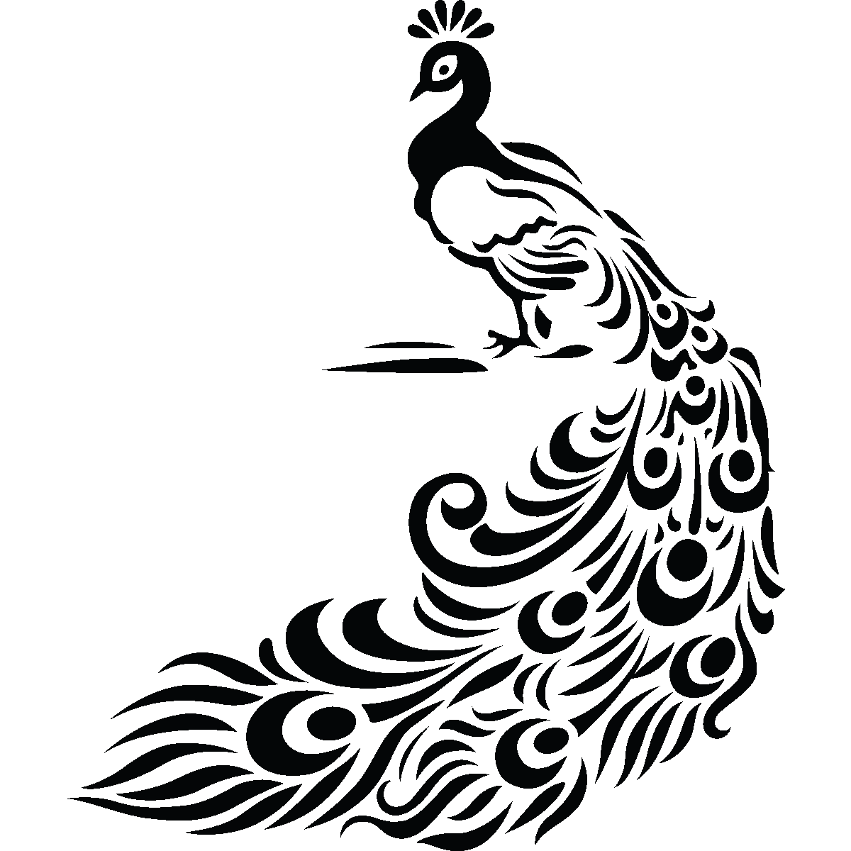 svg library library Peacock clipart black and white. Images for feather drawing