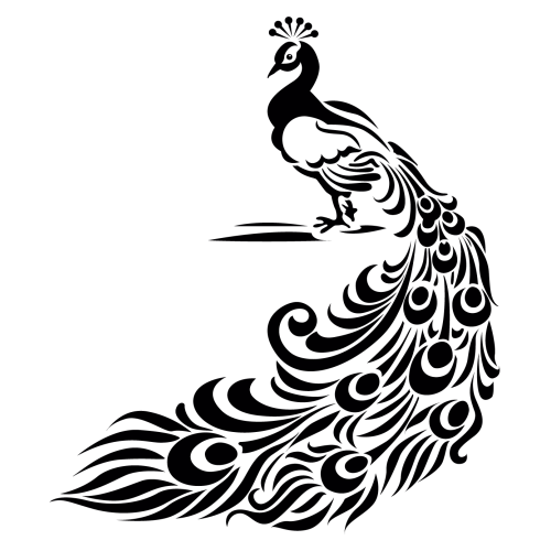 transparent download Pavo real dibujo buscar. Peacock clipart black and white