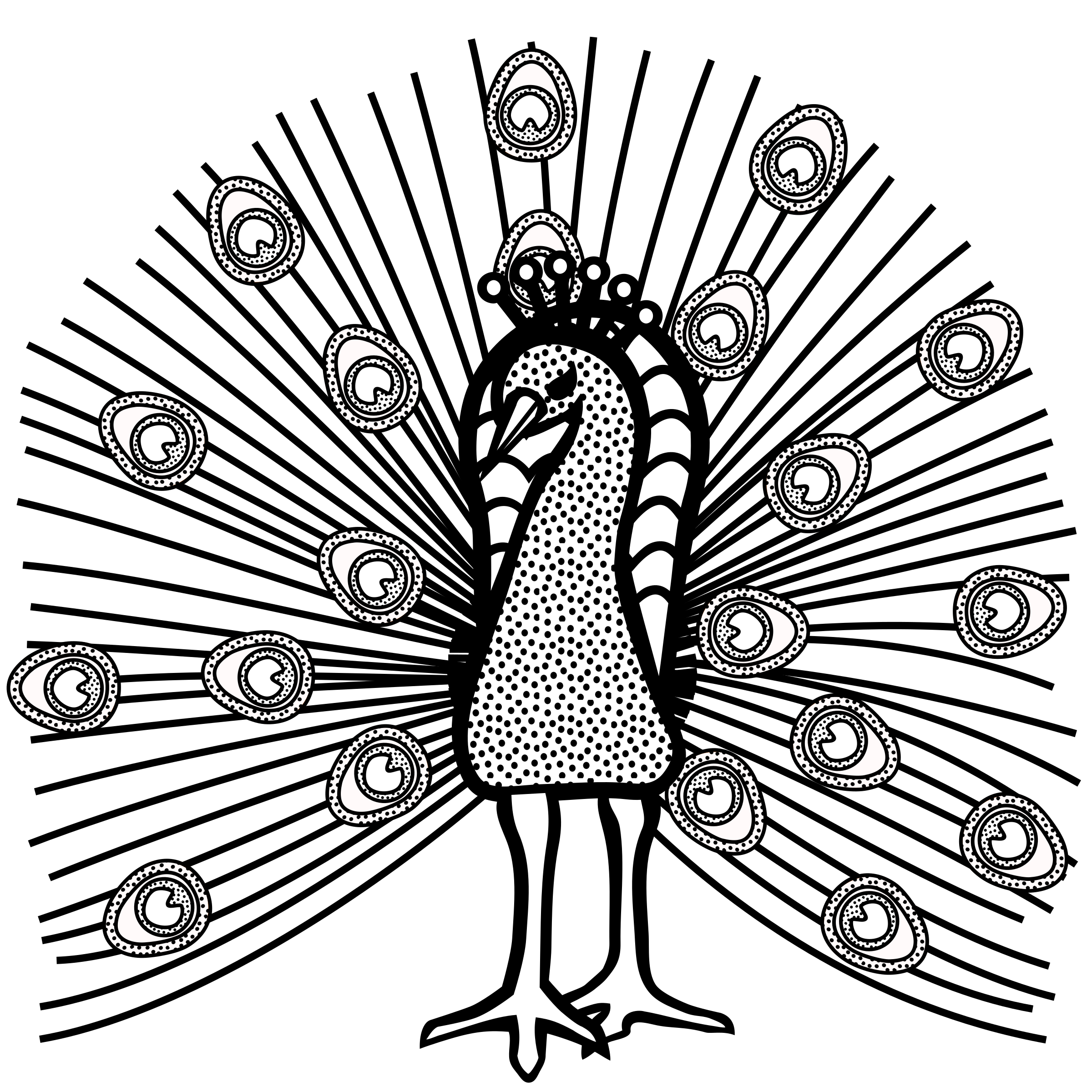 clip transparent stock Peacock clipart black and white. Lineart big image png