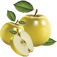 clip art freeuse Pear clipart nashpati. Download apple free png