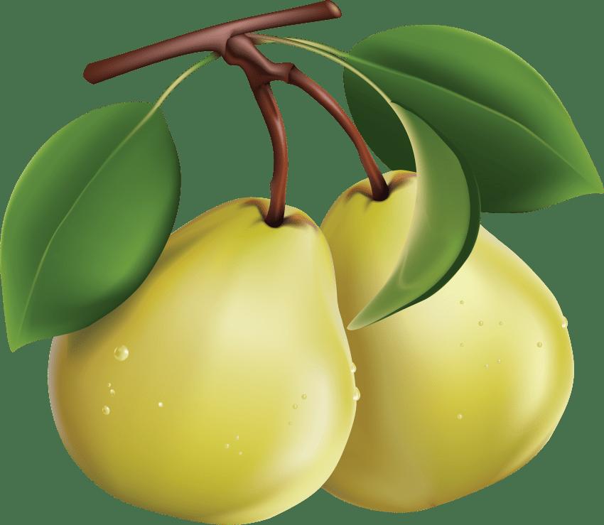 jpg transparent download pear png