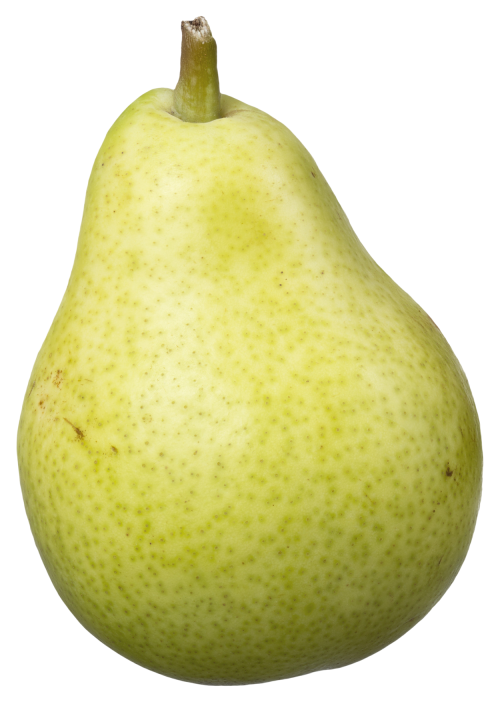 clip art transparent library Pear Fruit PNG Transparent Image