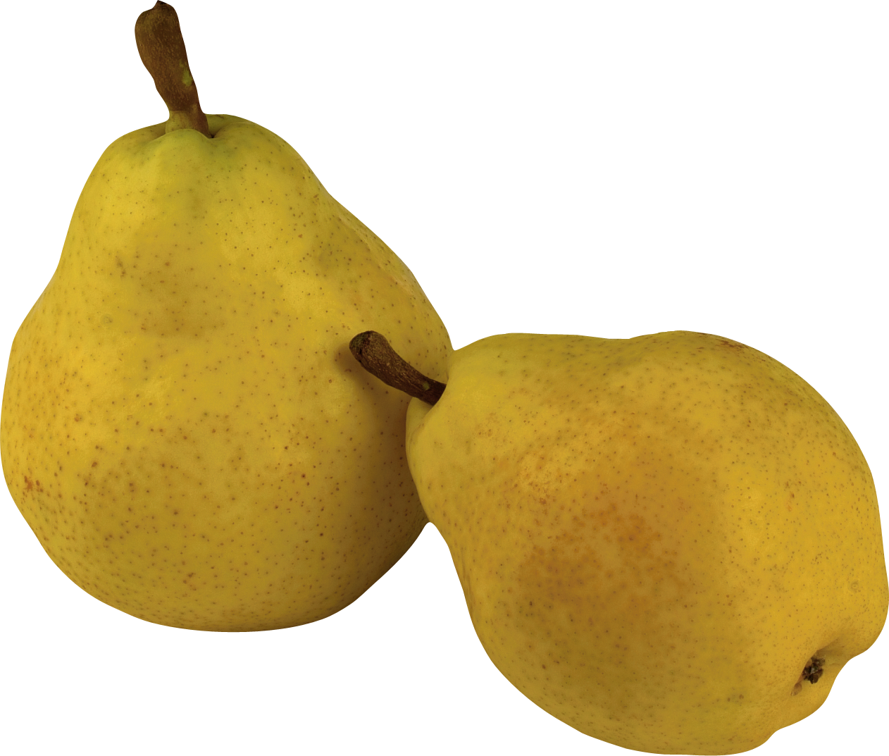 png library Pears PNG Image