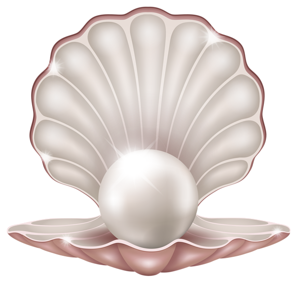 png freeuse library Beautiful clam with png. Pearl clipart.