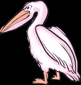 image transparent download Pink clip art at. Pelican clipart.