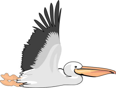 banner royalty free library Pelican clipart. Download free png transparent