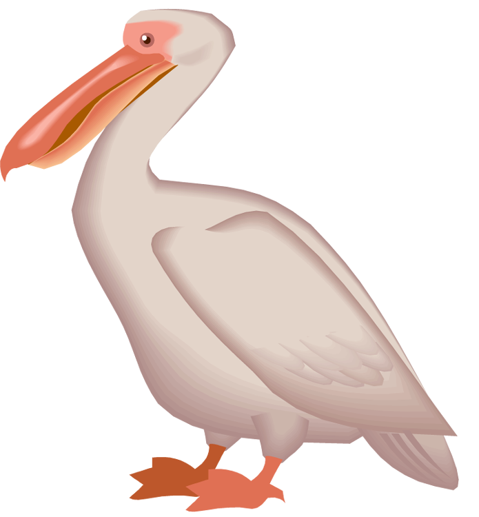 jpg black and white library Pelican clipart. Free with big beak