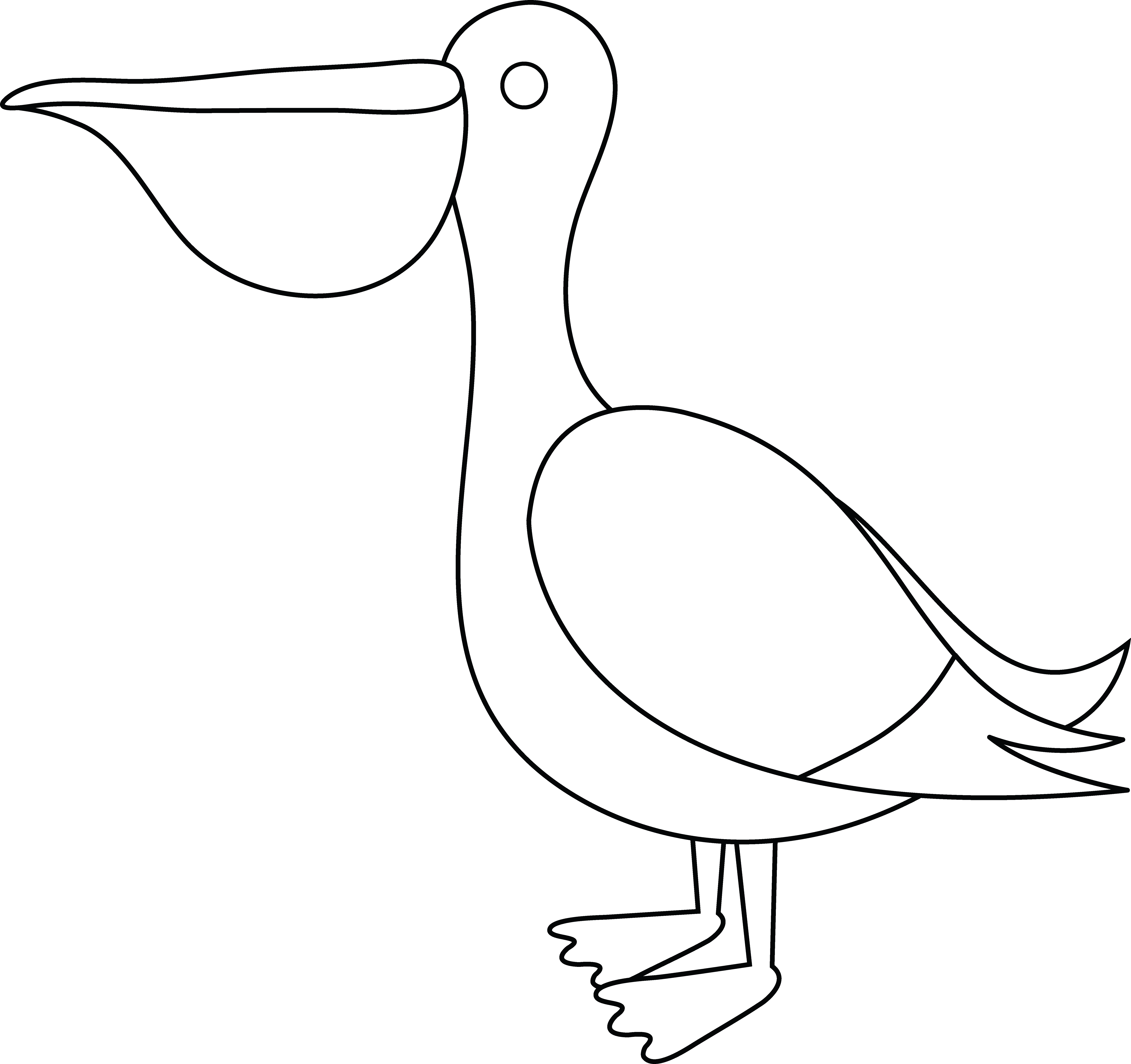 clipart freeuse Colorable Pelican