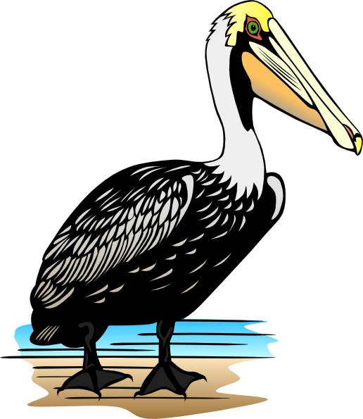black and white download Clip art black and. Pelican clipart simple