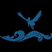 jpg royalty free stock Flying Pelican Men