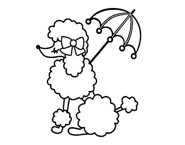 vector Coloring page Poodle with sunshade to color online