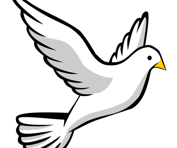 svg royalty free stock Pentecost clipart. White dove free on
