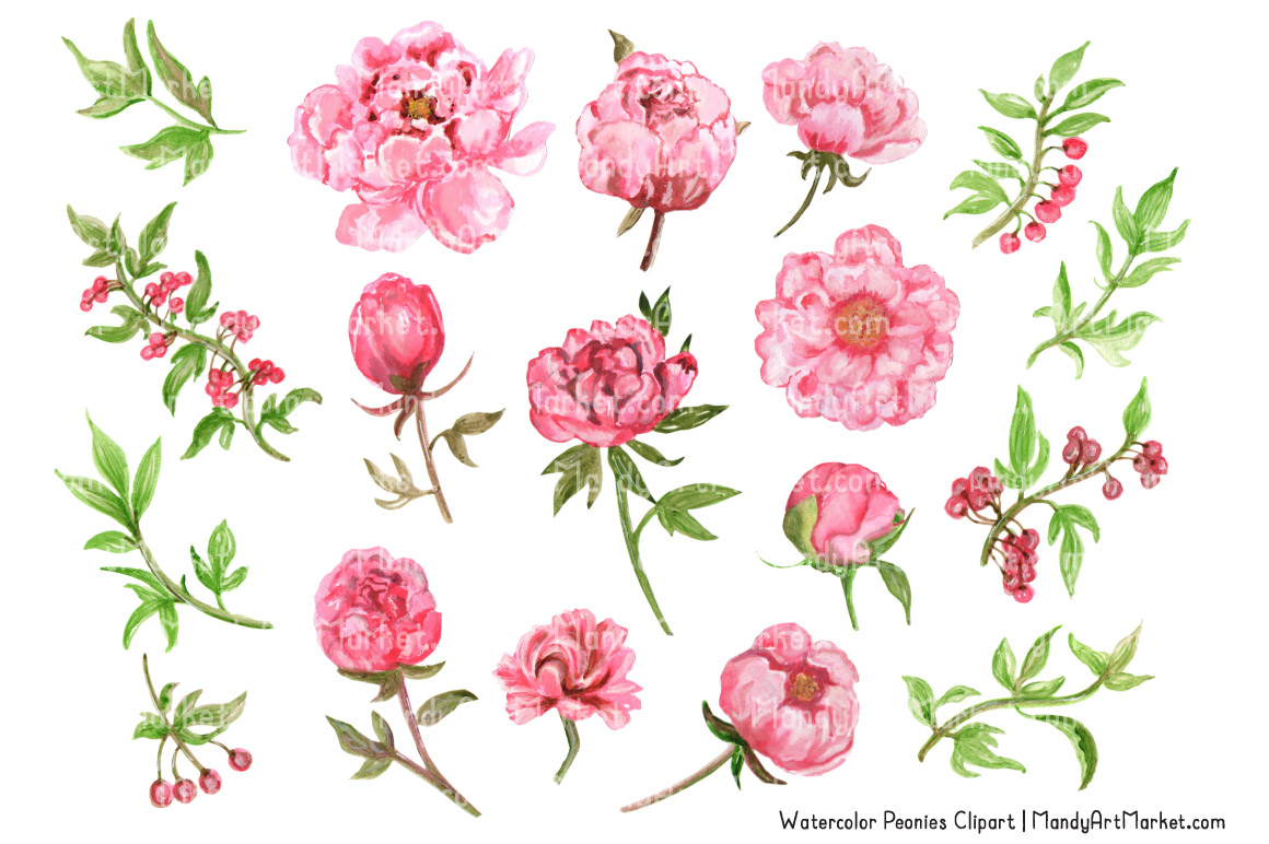 svg royalty free library Free cliparts download clip. Peonies clipart