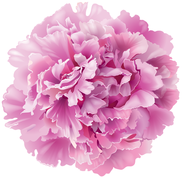 image black and white stock Peonies clipart. Pin by pirjo humpas