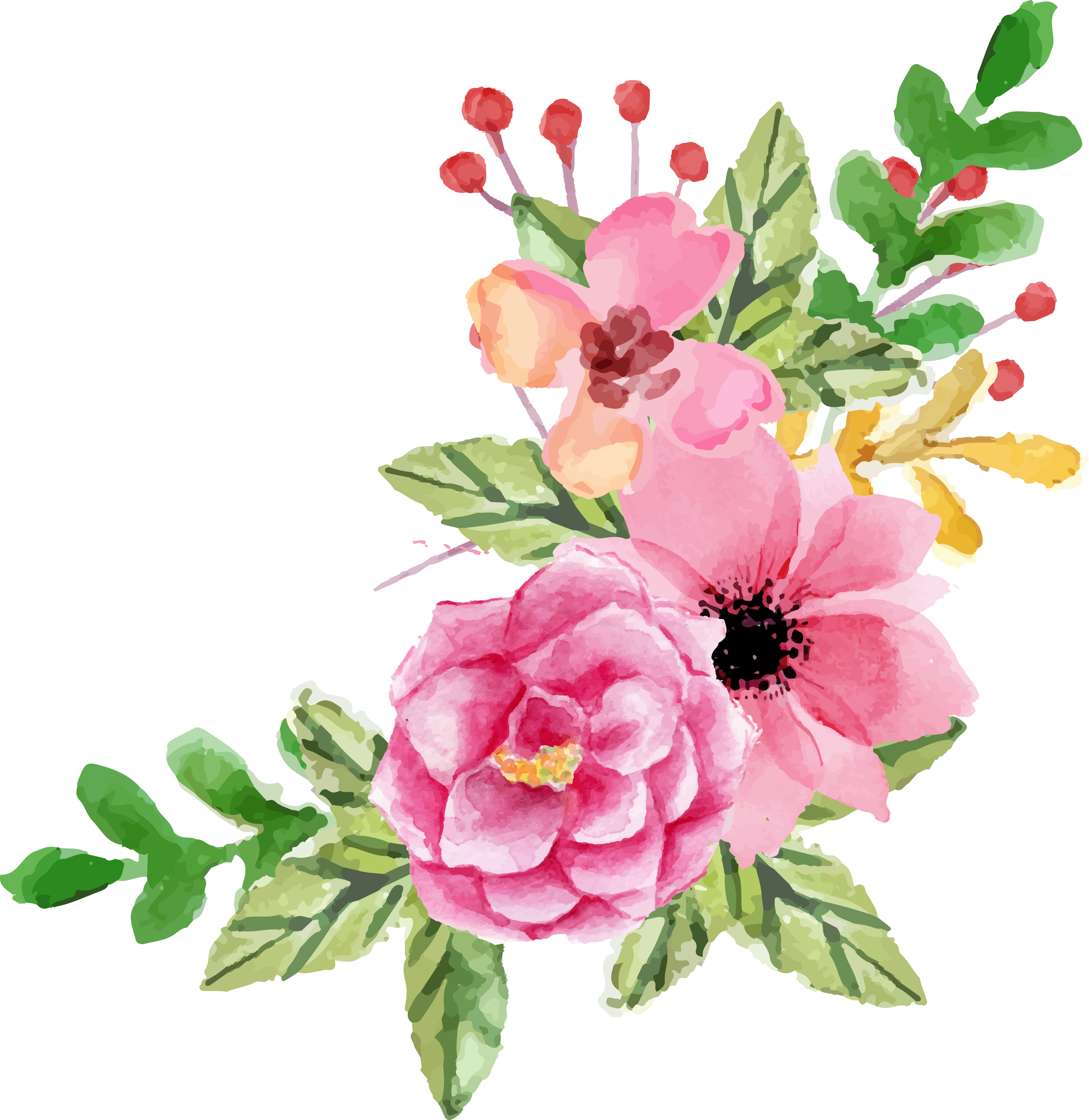 vector transparent library Valentines day flower elements. Peony clipart boho