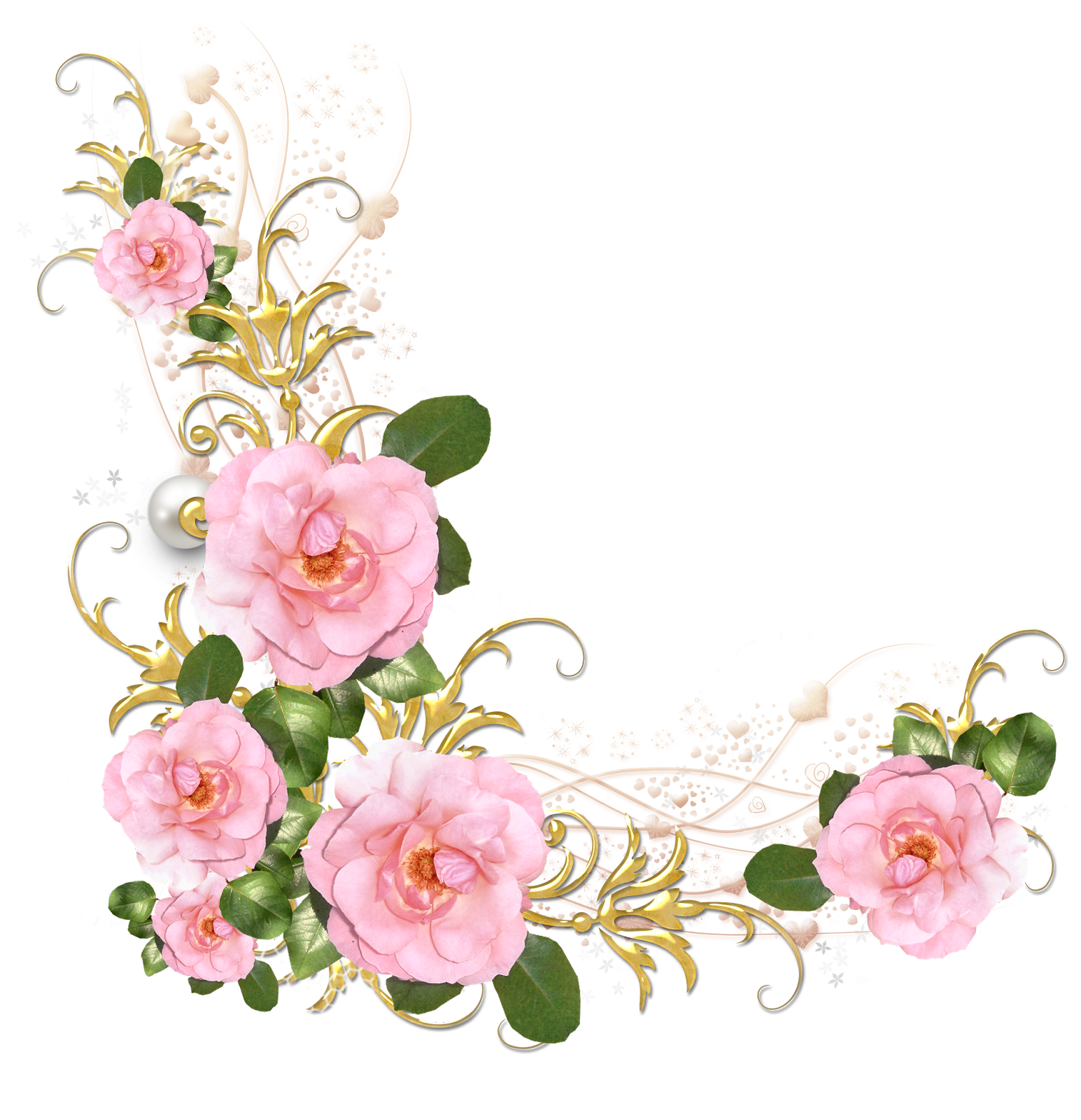 picture library download Peonies clipart floral accent. Pin by on pinterest
