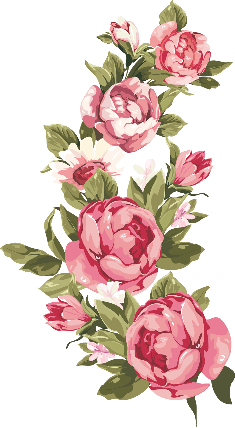 png library stock watercolor roses clipart #67128087